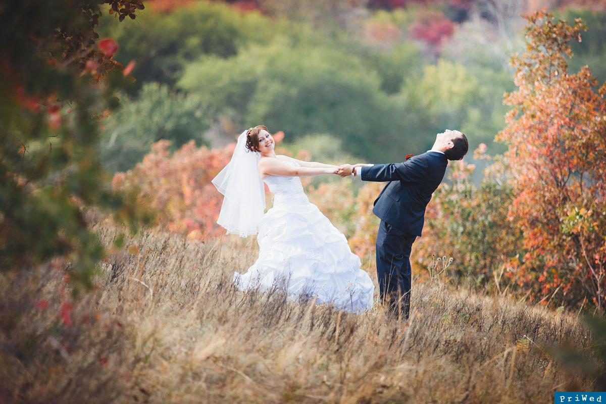 Декор для свадьбы фото