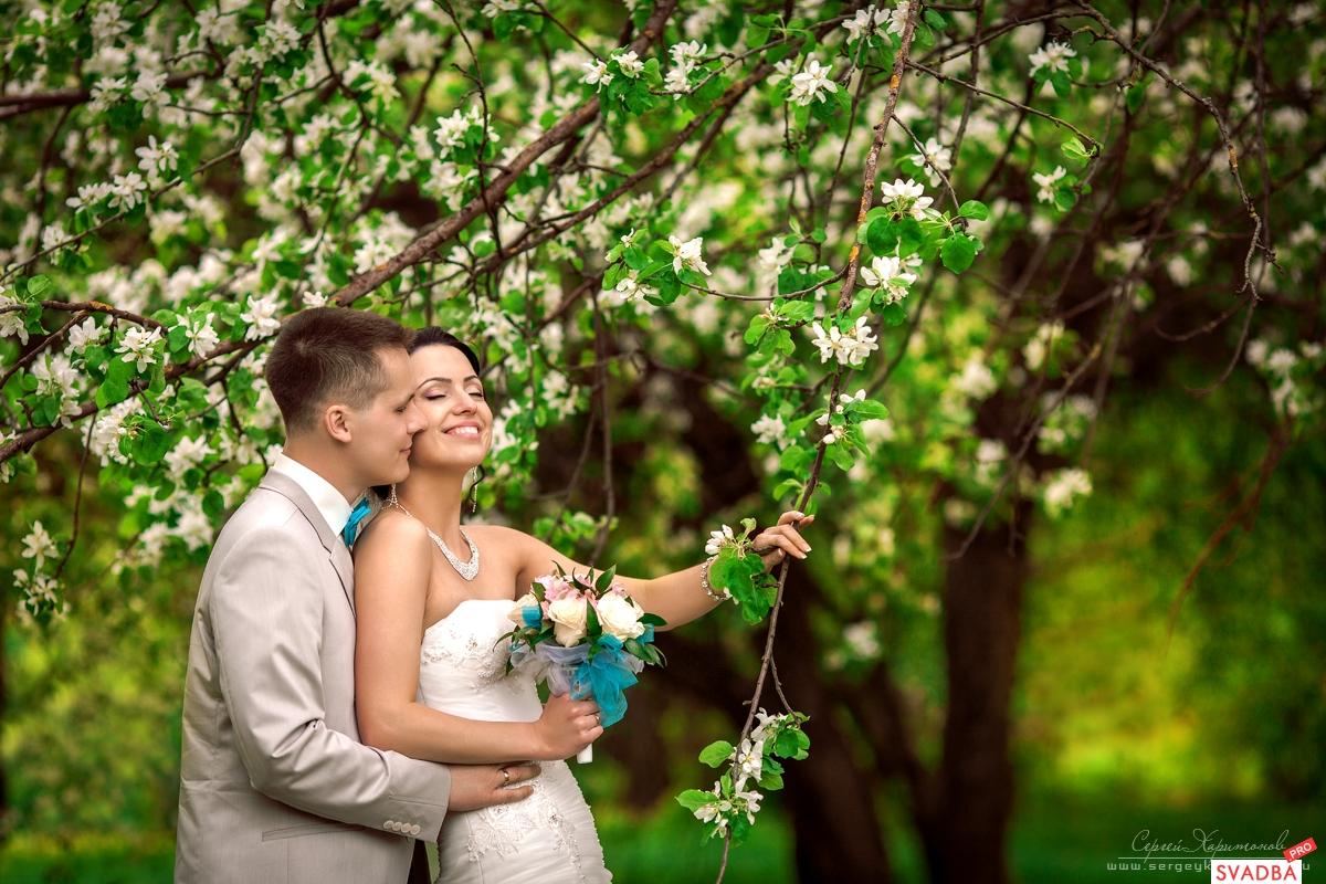Свадьбы йошкар олы 98